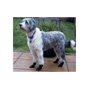 Paw Ideas  Dog Boots  size 2