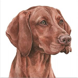 Waggy Dogz Art Cards