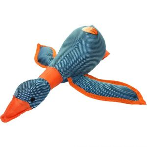 Dazzle Duck