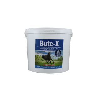 Equine Bute-X