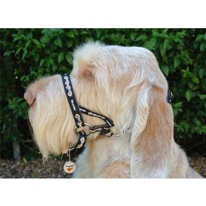 Dogmatic Head Collar - PADDED CUSHIONED WEBBING