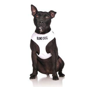 FriendlyDog Blind Dog Vest Harness