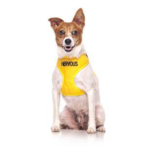 FriendlyDog Nervous Dog Vest Harness