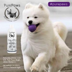 Pure Paws Bright White SLS Free Shampoo - 1 Gal/3.8L